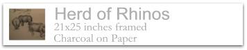 Herd of Rhinos