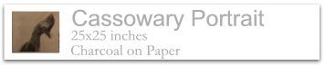 Cassowary Portrait